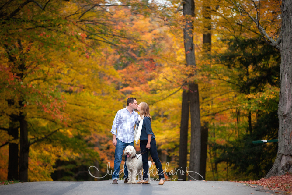 couple kisses in road in Chestnut Ridge Park during their fall foliage engagement portraits in Orchard Park, NY