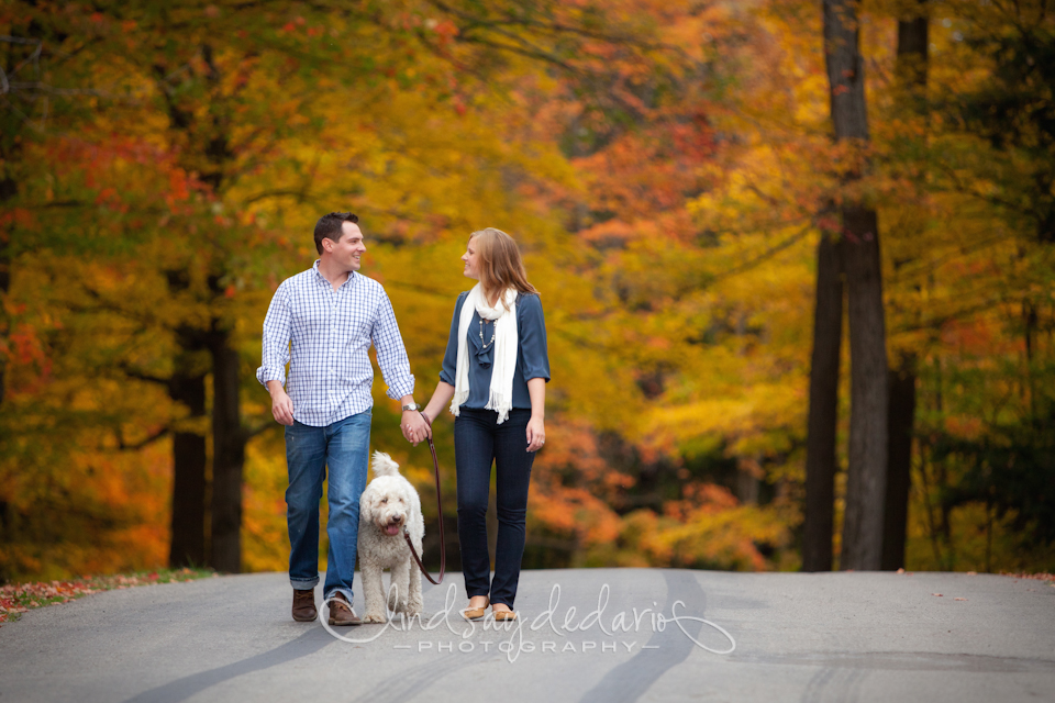 couple walks down road in Chestnut Ridge Park during their fall foliage engagement portraits in Orchard Park, NY