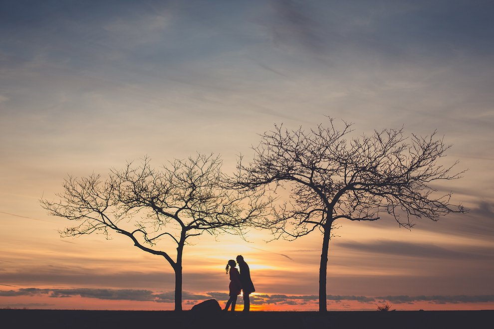 couple embraces in silhouette between two trees around sunset for their wedding anniversary photography session at Buffalo, NY outer harbor