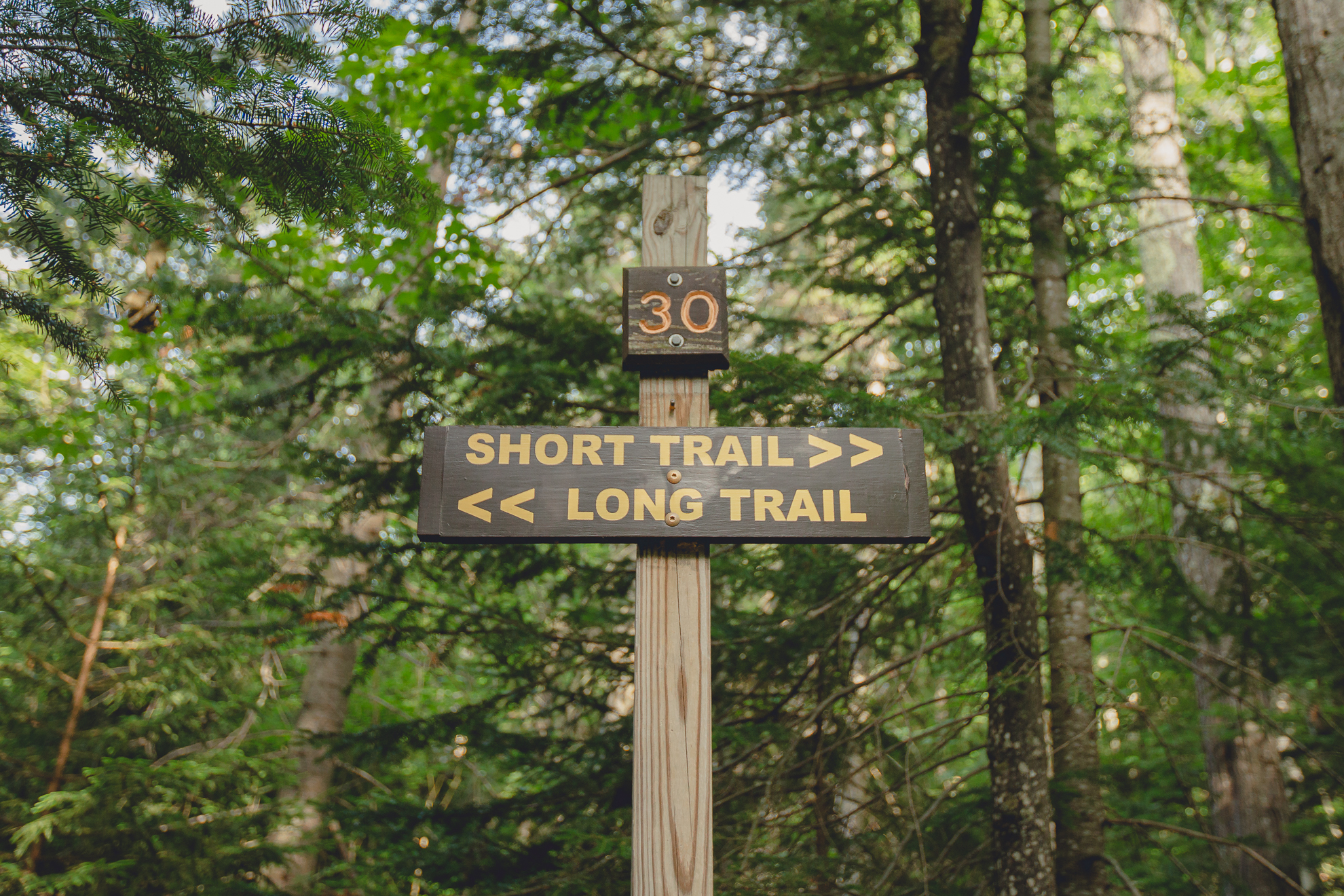 trail signage on Mount Jo in the Adirondack High Peaks Region of New York