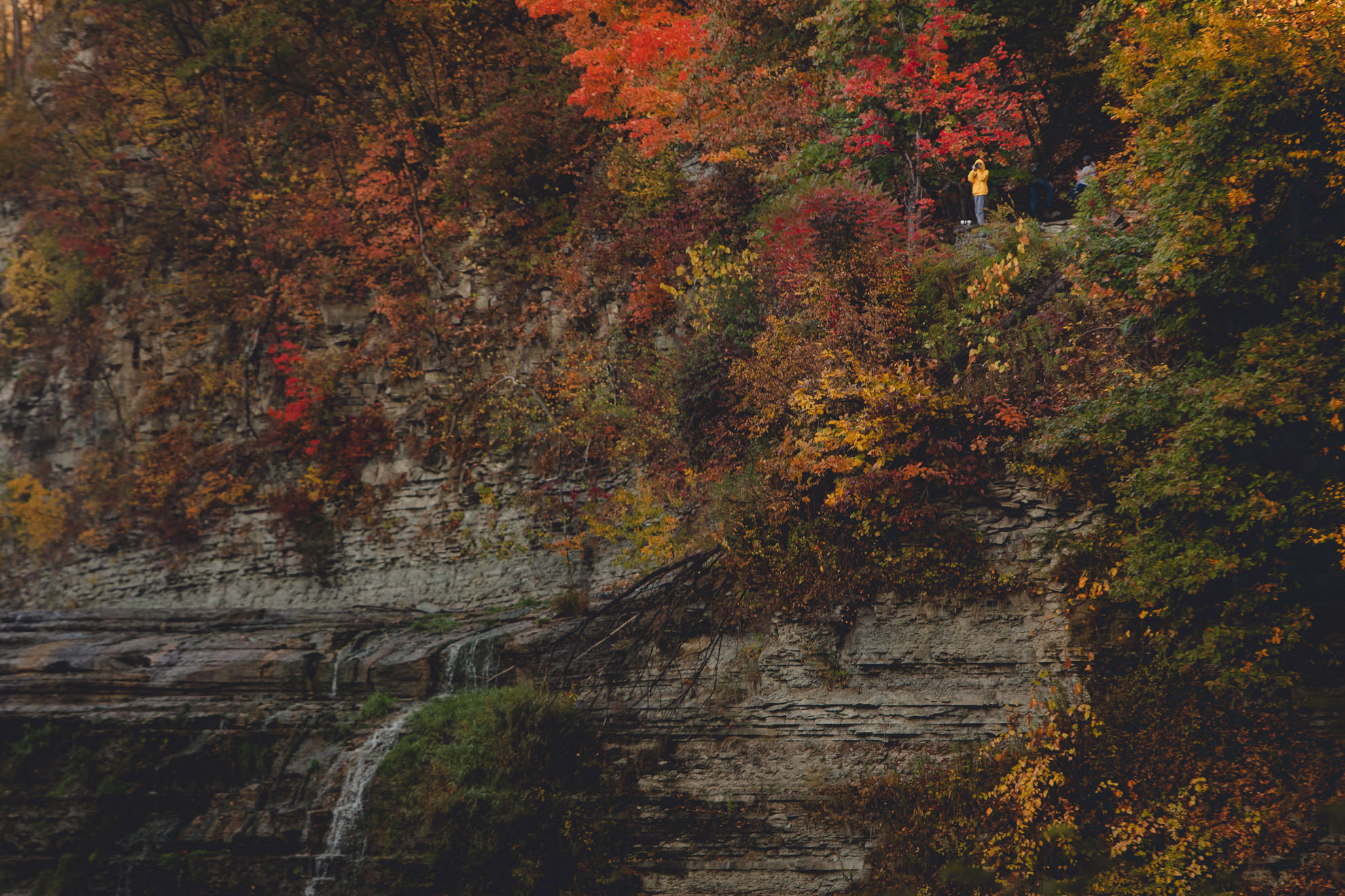 tourist in yellow rain jacket takes pictures at Upper Falls with fall colors at Letchworth State Park