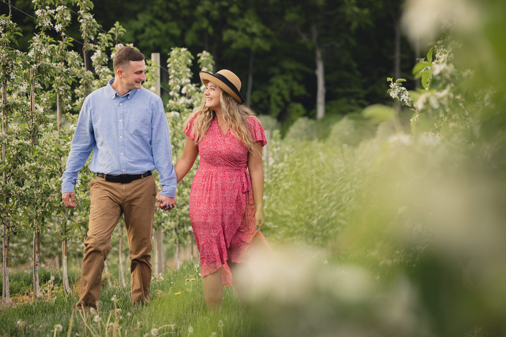 couple laughs while walking through flowering fruit trees during wedding engagement proposal photography in orchard in Niagara County